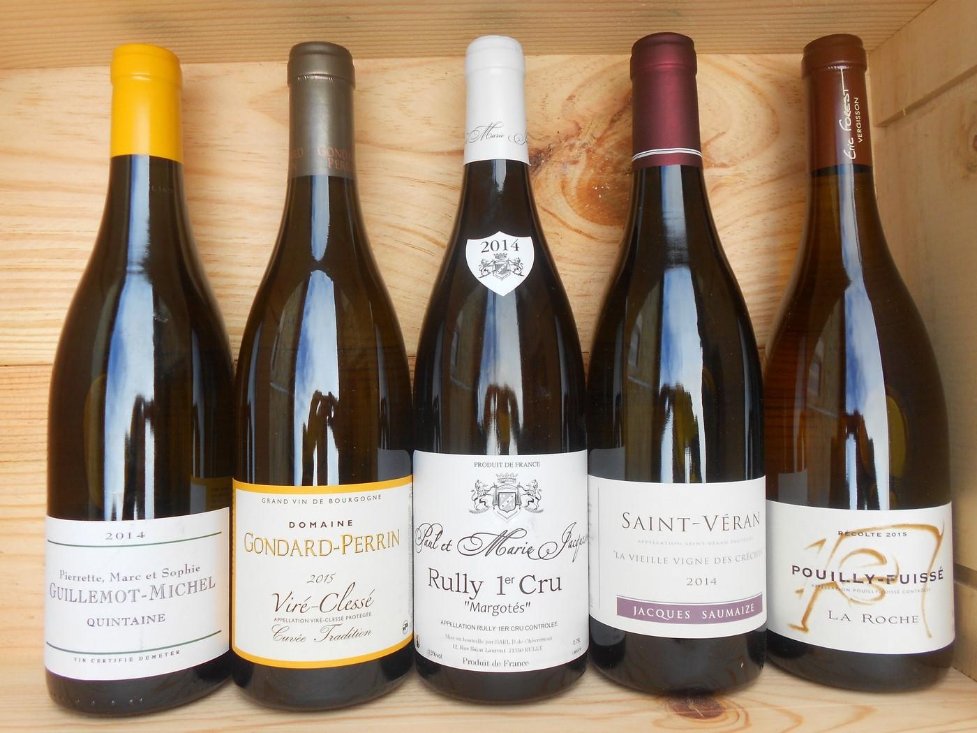 Un échantillon de nos vins proposés