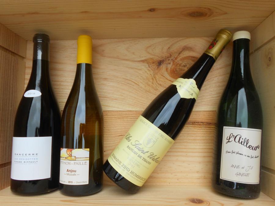 vin divers